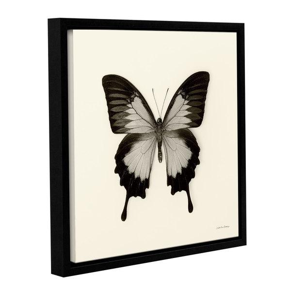 Shop Debra VanSwearington\'s \'Butterfly III BW\' Gallery Wrapped ...