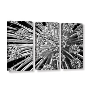 Jennifer Beavers's 'Light Kisses S Series Queen Anne's 'Lace' 3 Piece Gallery Wrapped Canvas Set