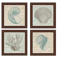 Erin Clark 'Sea Shells' Framed Art (Set of 4) - Teal/Cream