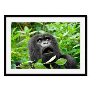 Mountain Gorilla, Framed Paper Print