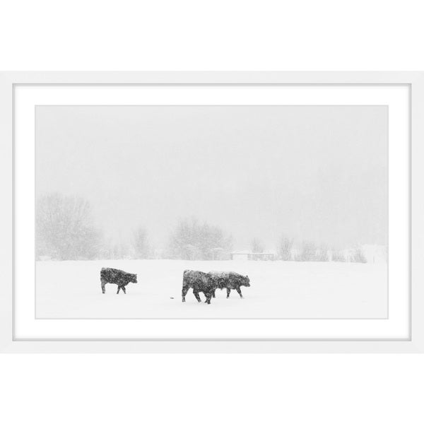 Marmont Hill - 'Roaming the Land' Framed Painting Print
