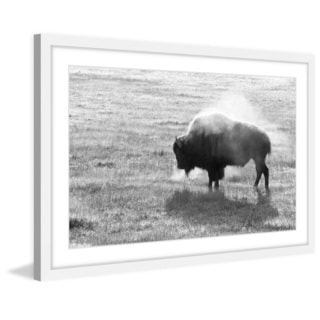 Marmont Hill - 'Lone Buffalo' Framed Painting Print