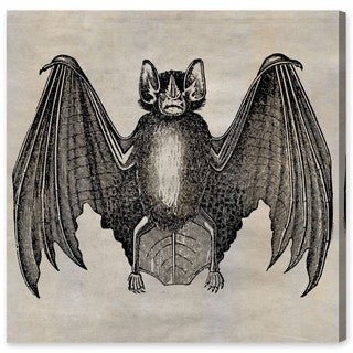 Oliver Gal Bat Canvas Art