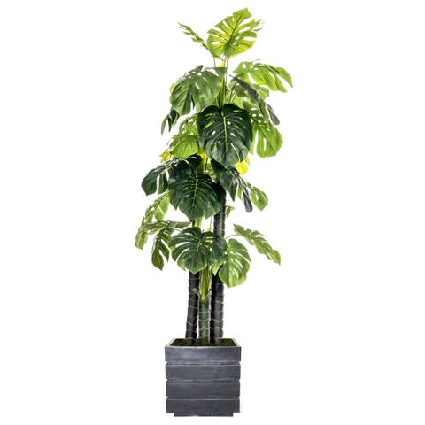 Laura Ashley 78-inch Indoor/Outdoor Monstera Ceriman in Fiberstone Pot
