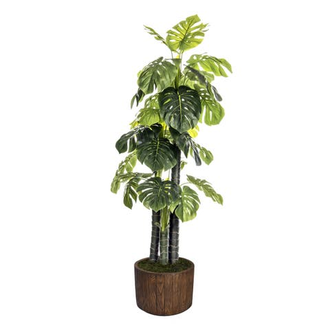 Laura Ashley 76.8-inch Indoor/Outdoor Monstera Ceriman in Fiberstone Pot