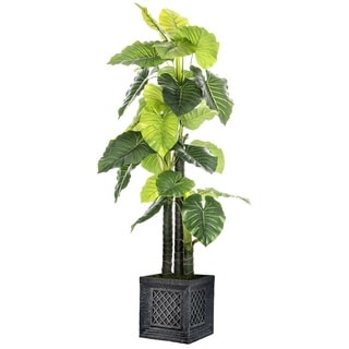 Laura Ashley Elephant Ear Silk 78-inch Tall Indoor or Outdoor Plant in Fiberstone Planter