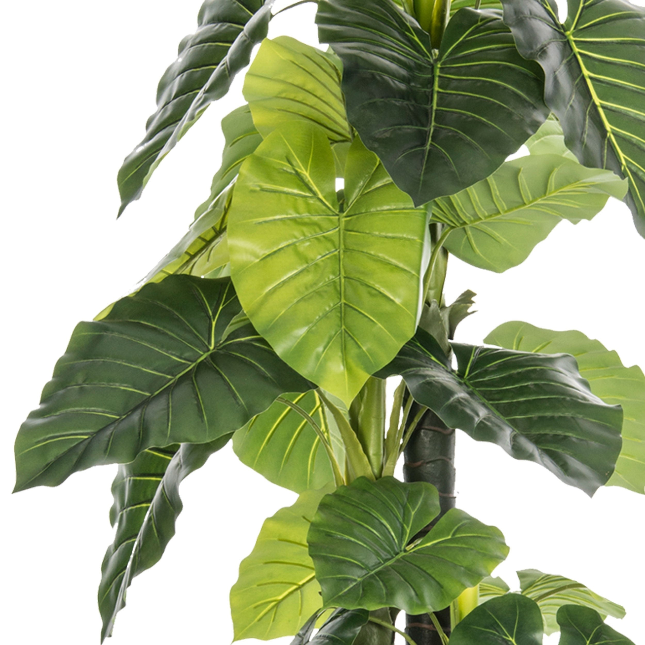 Shop Artificial 77 6 Inch Tall In Outdoor Elephant Ear Plant In