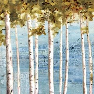 Hobbitholeco 'Beautiful Tree View' 24x24 Canvas Wall Art