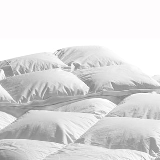 Highland Feather Manufacturing Laurens Organic Cotton White Down Comforter