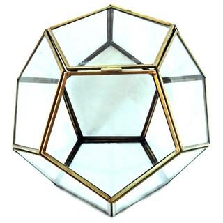 Glass Terrarium/Succulent Box