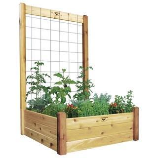 Raised Garden Bed with Trellis Kit