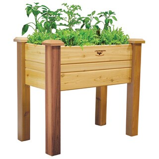 18-inch x 34-inch Elevated Garden Bed