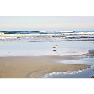 Marmont Hill - 'Lone Seagull' by Sylvia Cook Painting Print on Wrapped Canvas