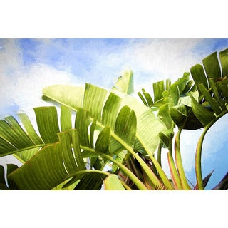 Marmont Hill - 'Tropical Charm' by Sylvia Cook Painting Print on Wrapped Canvas