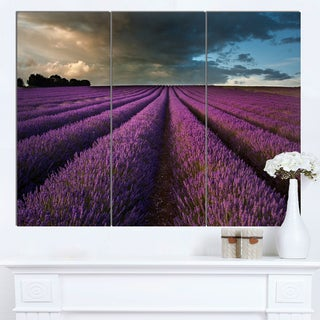 Designart 'Lavender Field and Dramatic Sky' Floral Artwork on Canvas