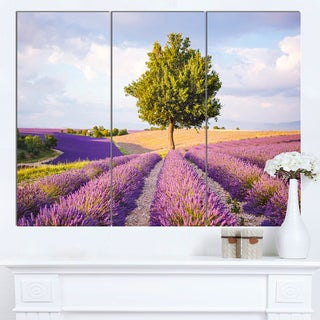 Designart 'Lonely Green Tree in Lavender Field' Extra Large Landscape Canvas Art