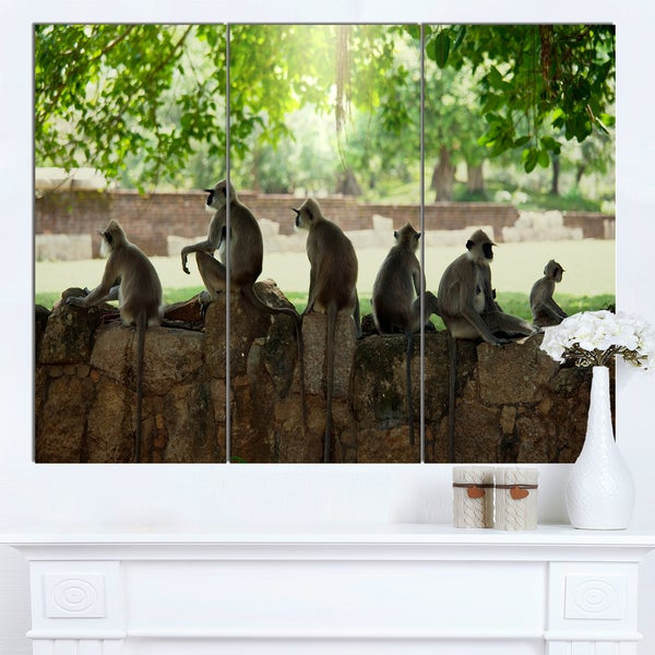 Designart 'Troop of Monkeys in Sri Lanka' African Art Canvas Print - brown