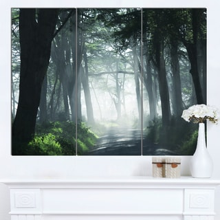 Designart 'Dense Rain Forest At Sunrise' Extra Large Landscape Canvas Art