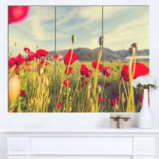 Designart 'Wild Red Poppy Flowers in Field' Large Flower Wall Artwork