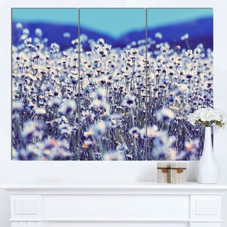 Designart 'Amazing Light Blue Chamomile Blossom' Large Flower Wall Artwork