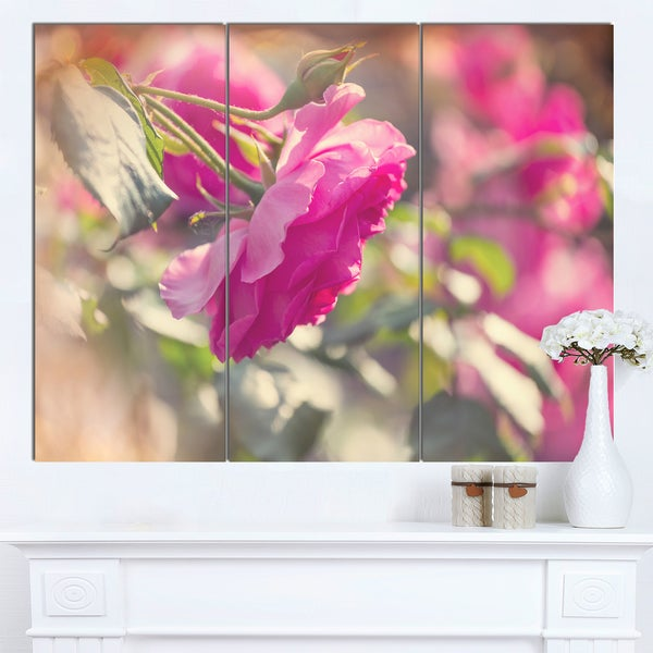 Designart 'Beautiful Pink Rose Flowers' Modern Flower Canvas Art Print