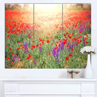 Designart 'Expansive Poppy Field At Sunset' Modern Flower Canvas Art Print