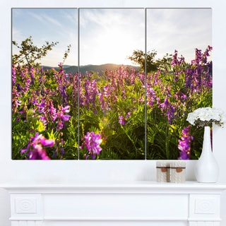 Designart 'Amazing Summer Pasture with Flowers' Modern Flower Canvas Art Print