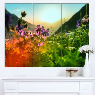 Designart 'Multicolor Mountains Meadow View' Modern Flower Canvas Art Print