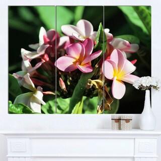 Designart 'Beautiful Little Pink White Flowers' Floral Canvas Art Print