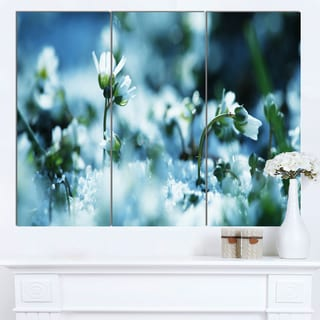 Designart 'Little White Flowers in Meadow' Large Flower Canvas Wall Art