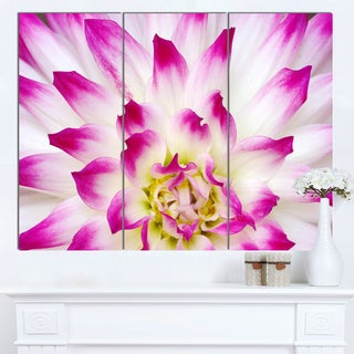 Designart 'Smooth White Rose Floral Petals' Modern Floral Canvas Wall Art