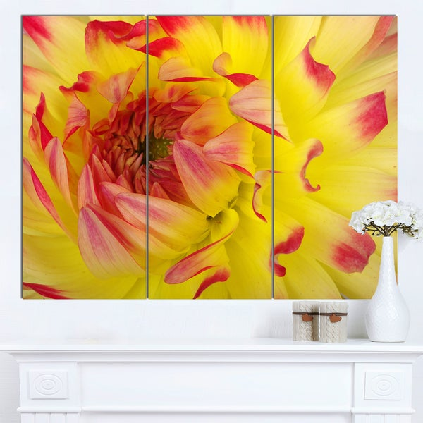 Designart 'Smooth Yellow Red Petals Close-Up' Modern Floral Canvas Wall Art