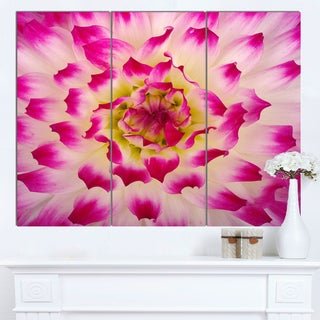 Designart 'Smooth White Rose Flower Petals' Modern Floral Canvas Wall Art