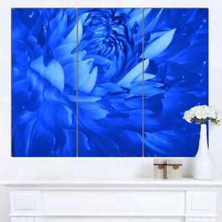 Designart 'Bright Blue Flower Petals' Modern Floral Canvas Wall Art