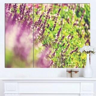 Designart 'Beautiful Mint Flowers in Garden' Modern Flower Canvas Art Print