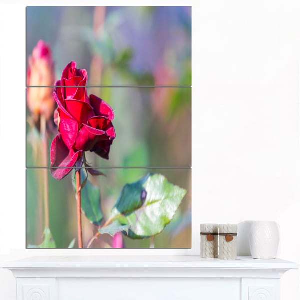 Designart 'Red Rose on Blurred Background' Large Flower Canvas Wall Art - Red
