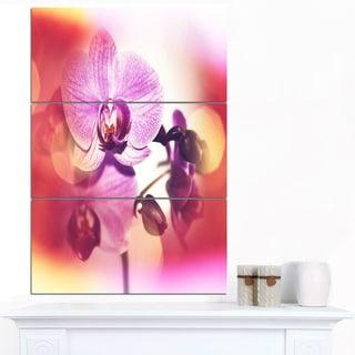 Designart 'Beautiful Pink Orchid Flowers' Large Flower Canvas Wall Art
