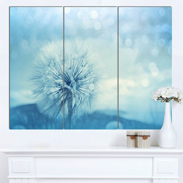 Designart 'Close-Up White Dandelion with Filter' Large Flower Canvas Wall Art