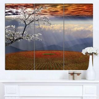 Designart 'Beautiful Flower Field At Sunset' Extra Large Landscape Canvas Art
