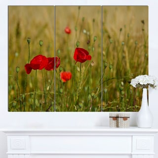 Designart 'Red Poppy Flower Field Background' Large Flower Canvas Wall Art
