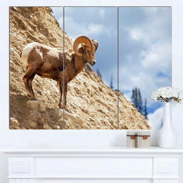 Designart 'Single Goat on Rocky Mountain' Extra Large Animal Art Print - multi