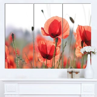 Designart 'Soft Poppy Flowers Petals View' Modern Floral Artwork on Canvas