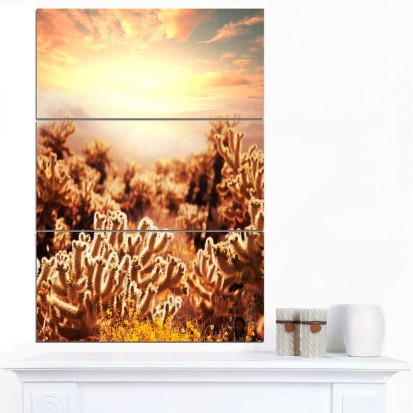 Designart 'Cactus Plants in Saguaro National Park' Modern Flower Canvas Art Print