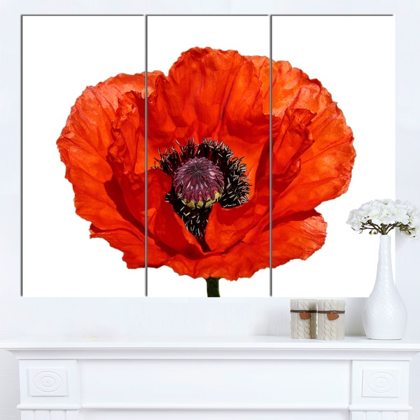 Designart 'Red Poppy Blossom Close-Up' Modern Floral Artwork on Canvas - Red