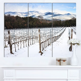 Designart 'Snow Covered Vineyard Rows Italy' Extra Large Landscape Canvas Art