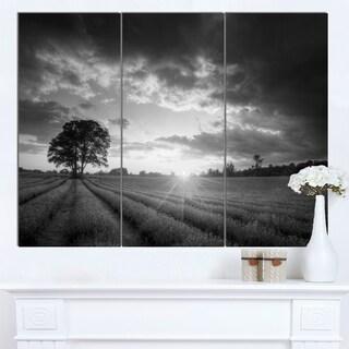 Designart 'Vibrant Black White Lavender Field' Extra Large Landscape Canvas Art