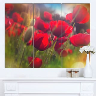 Designart 'Thick Red Poppy Flowers' Extra Large Floral Canvas Art