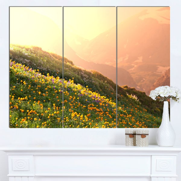 Designart 'Flowering Mountain Meadow View' Oversized Landscape Canvas Art - Green
