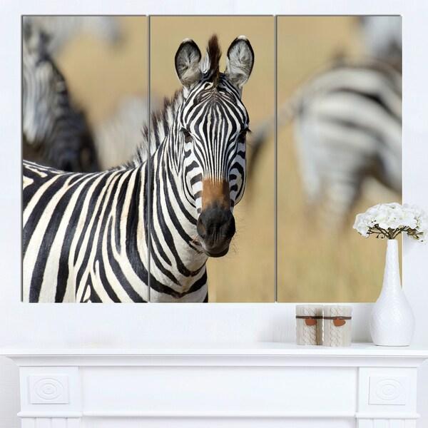 Shop Designart African Zebra Close Up View African Wall