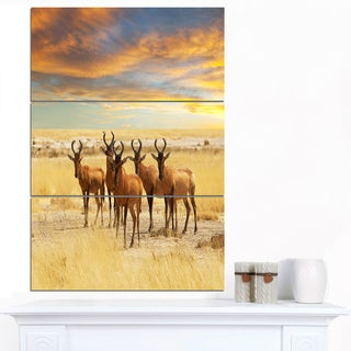 Designart 'Herd of Antelope in Grassland' Extra Large African Art Print
